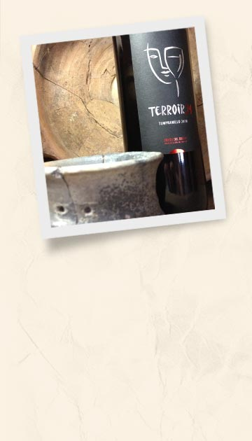 Red Terroir34 bottle